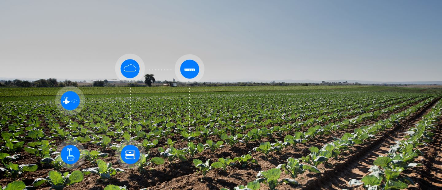 Digital farming per Pieno campo