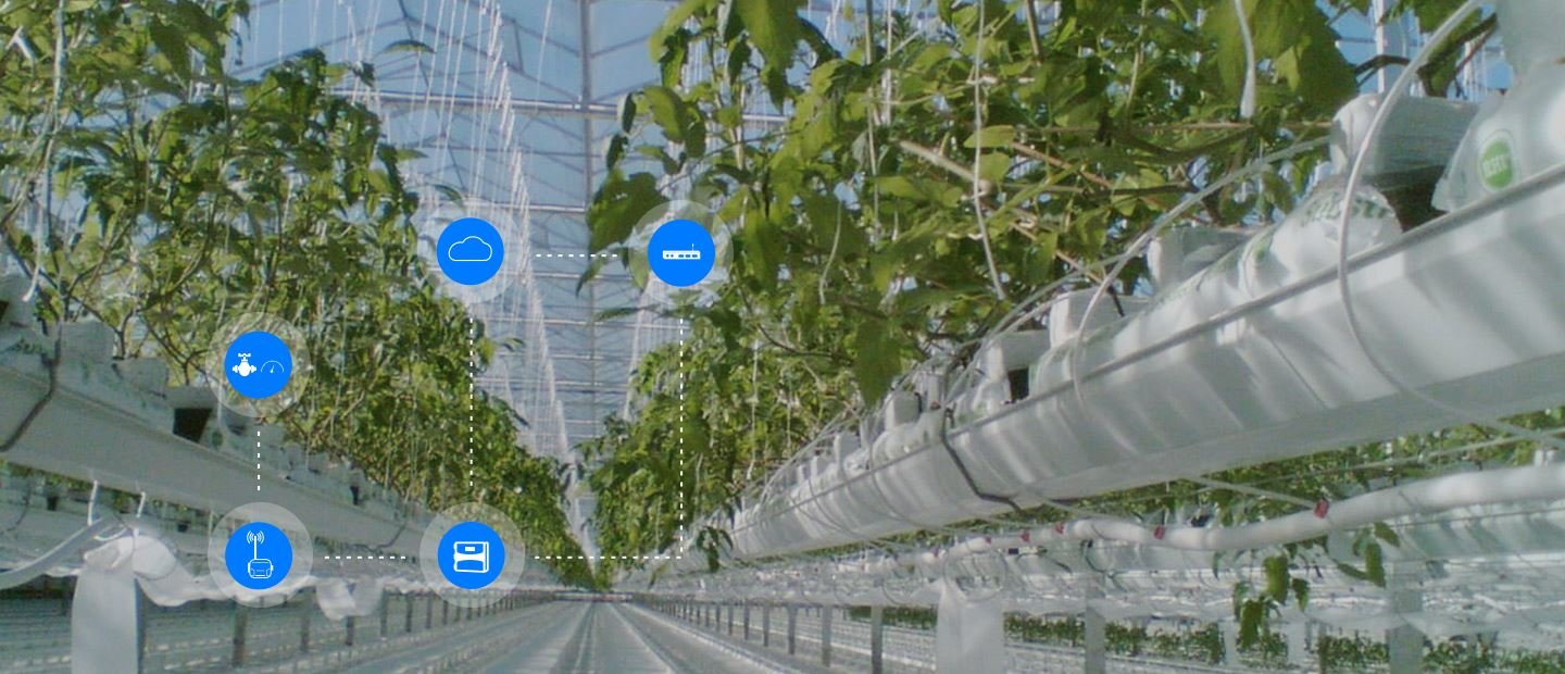 Digital farming per colture protette